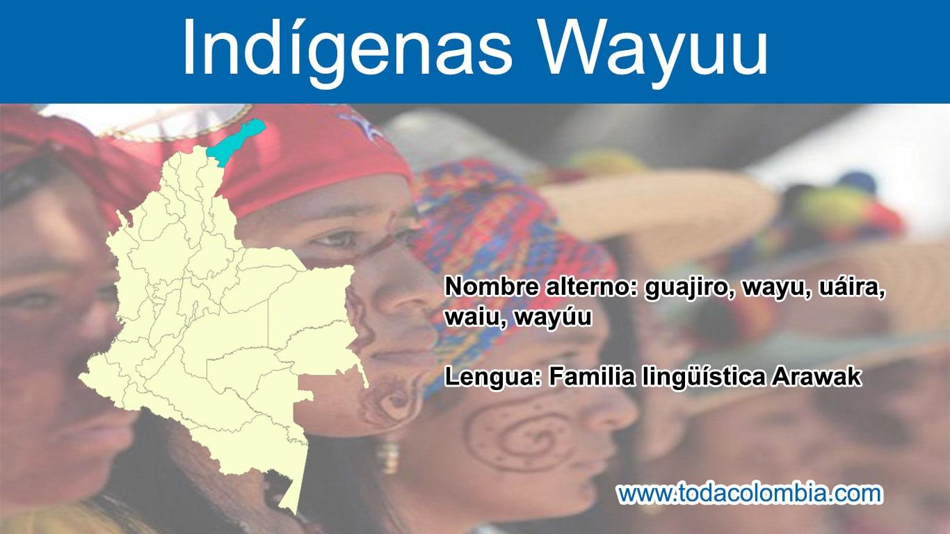 Indio Wayuu Colombia